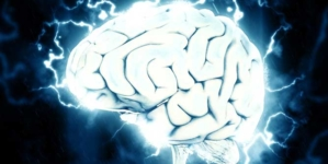 Sete elementos necessários à saúde de seu cérebro