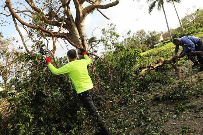 Flórida em alerta com temporada de furacões