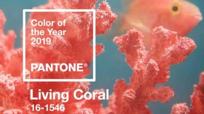 Living Coral é a cor de 2019, segundo a Pantone