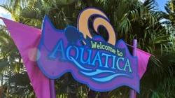 Aquatica torna-se o primeiro parque aquático certificado para o autismo do mundo