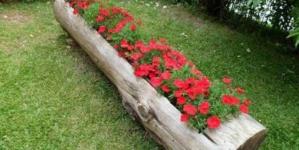 Atenção redobrada no jardim