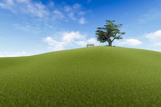 O Que é Resiliência Humana?  (e Como Utilizá-la)