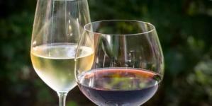 A taça do vinho é nossa