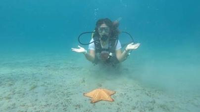 Benefícios do mergulho podem mudar sua vida