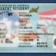 Novas regras ameaçam portadores de green card
