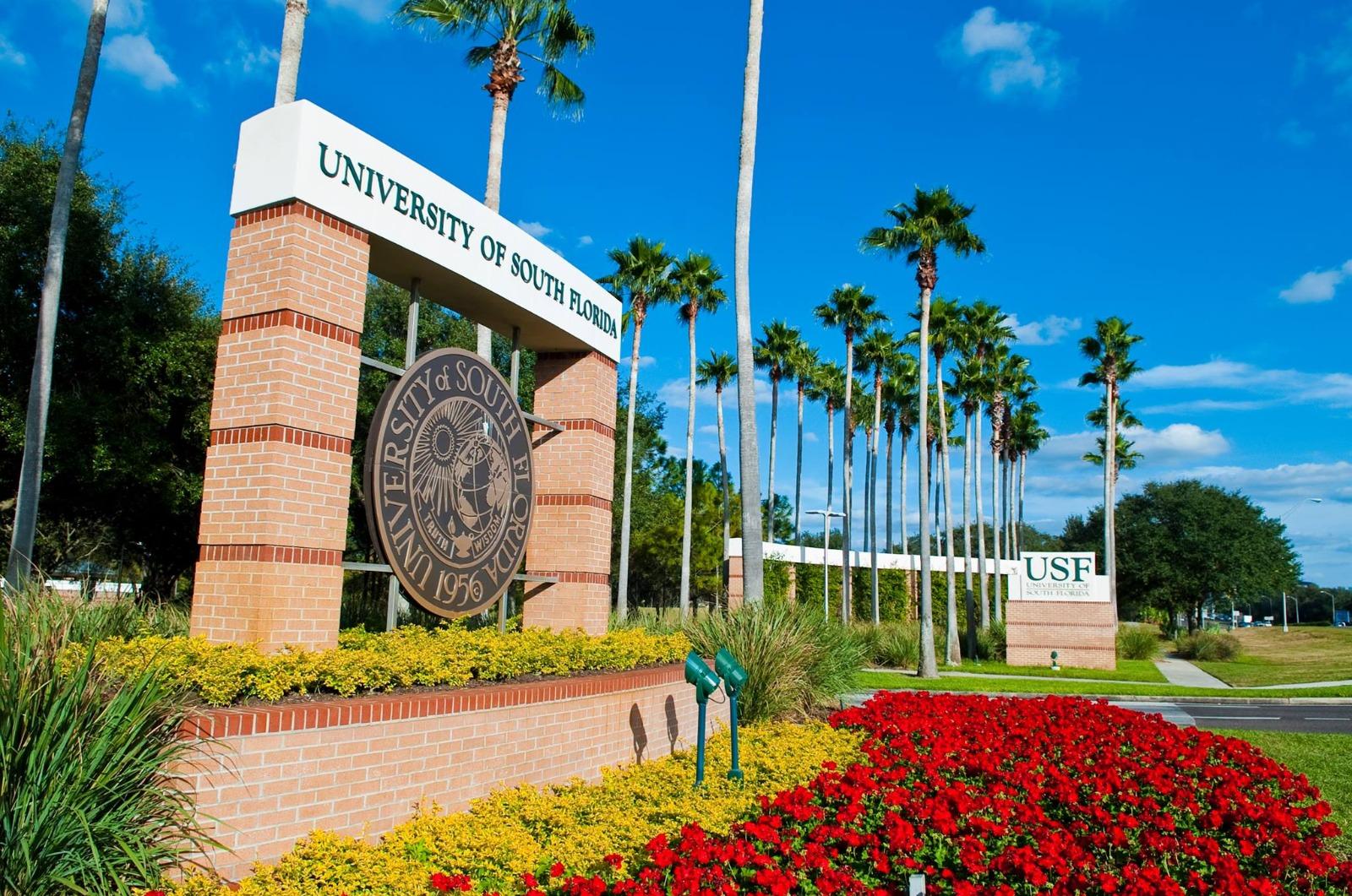 """Retorno de brasileiros à """"University of South Florida"""" será em agosto"""