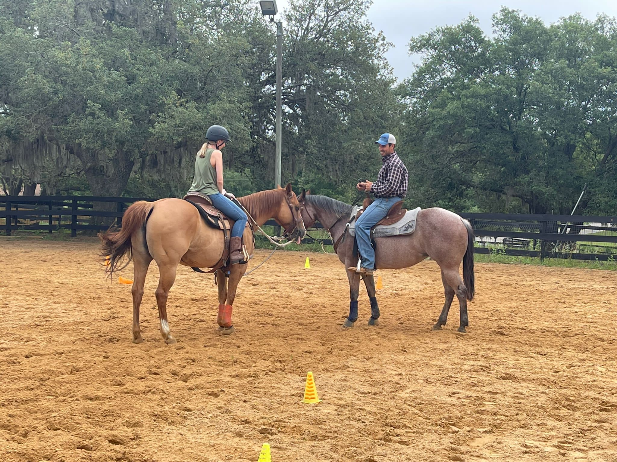 O prazer de cavalgar: conheça os benefícios da equitação na 'NSB Equestrian Center'