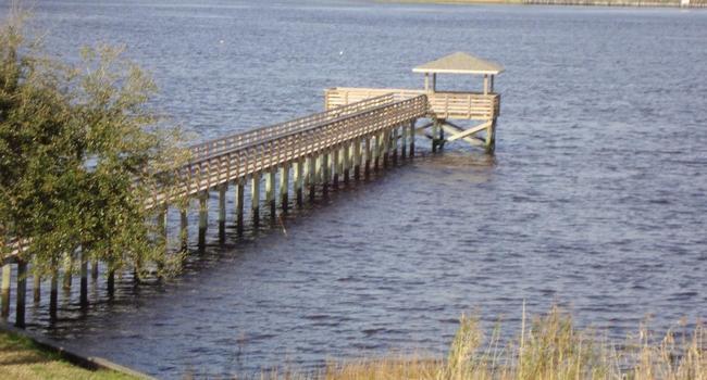 Menino de 7 anos salva pai e irmã em Jacksonville, após nadar contra a correnteza