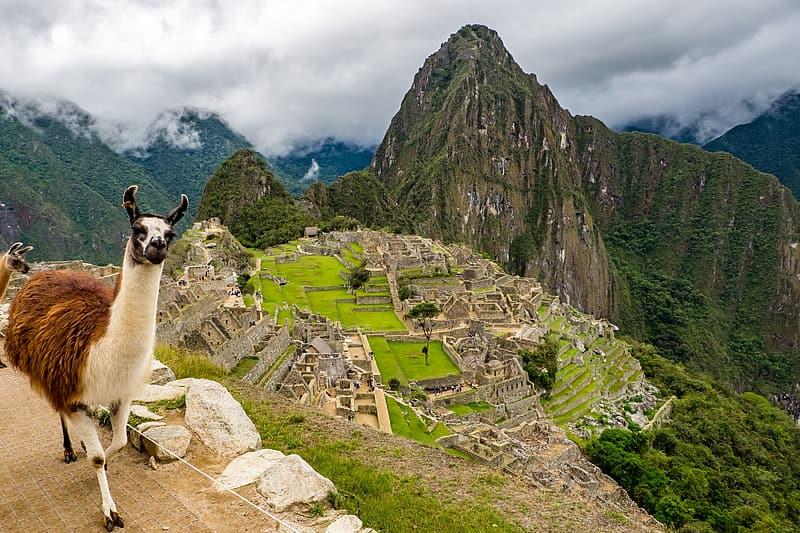 """Museu de Boca Raton cria primeira exposição virtual do mundo ao """"Machu Picchu"""""""